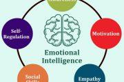 هوش هیجانی(عاطفی) چیست؟